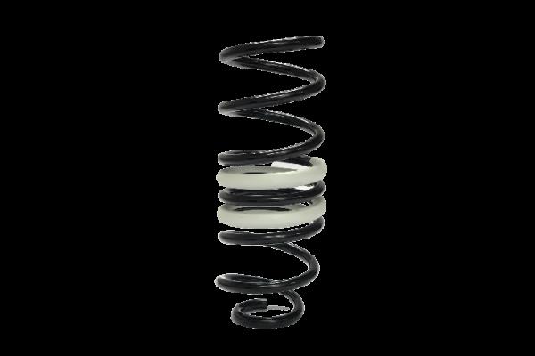 Hintere einstellbare Stoppblöcke und kurze Federn für MEGANE IV R.S. TROPHY-R